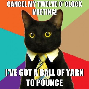 Business Cat ball of yarn