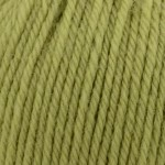 DWorsted Superwash 709 Lime Tree_web